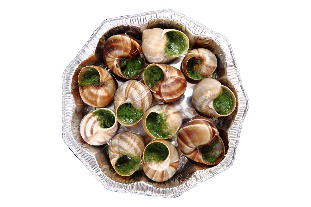 snails velec systems